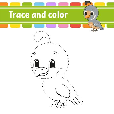 Trace and color. Quail bird. Coloring page for kids. Handwriting practice. Education developing worksheet. Activity page. Game for toddlers. Isolated vector illustration. Cartoon style.