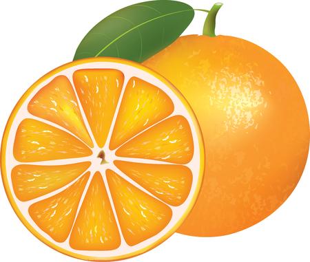 Whole orange and half, vector