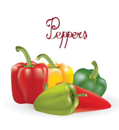 Peppers vector illustration set  イラスト・ベクター素材