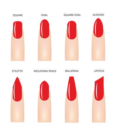 Formas de uñas con esmalte de uñas rojo, vector