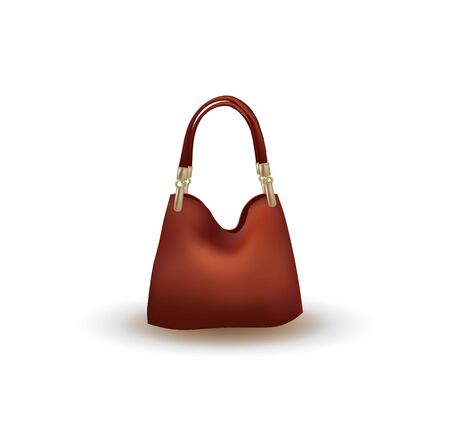 Brown bag on white background, vector