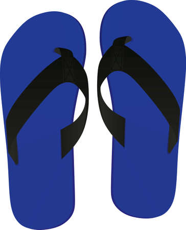 Blue flip flops. vector illustration