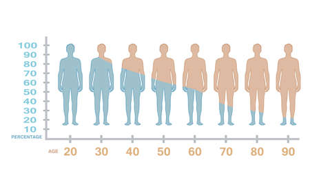 Male testosterone production level with age. vector Stock Illustratie