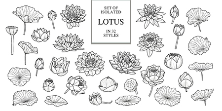 Set of isolated lotus in 32 style. Black outline. Hand drawn style. Vector illustration Stock Illustratie
