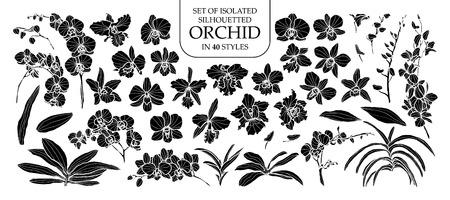 Verzameling van geïsoleerde silhouet orchidee in 40 stijlen. Leuke hand getrokken vectorillustratie in witte contouren en zwart vlak op witte achtergrond. Stock Illustratie