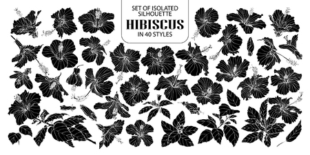 Set of isolated silhouette hibiscus in 40 styles. Cute hand drawn vector illustration flowers in white outline and black plane on white background. Ilustrace