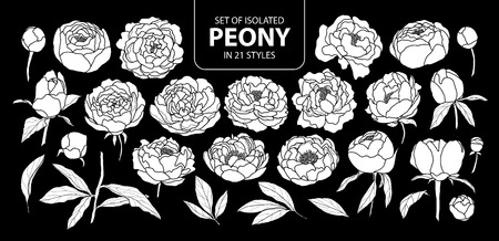 Set of isolated white silhouette peony in 21 styles. Cute hand drawn flower vector illustration in white plane and no outline on black background.