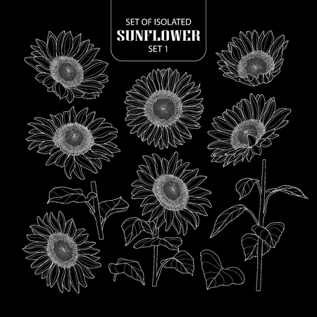 Set of isolated sunflower set. Cute hand drawn vector illustration only white outline on black background. Stock Illustratie