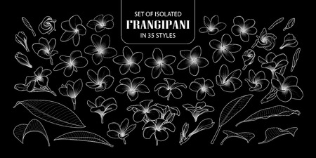 Set of isolated frangipani in 35 styles. Cute hand drawn flower vector illustration only white outline on black background. Ilustrace