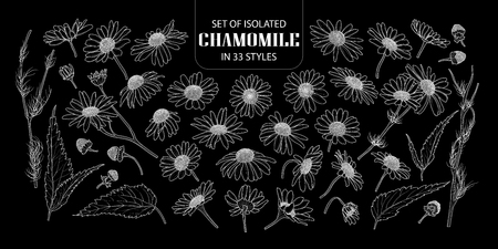 Set of isolated chamomile in 33 styles. Cute hand drawn flower vector illustration only white outline on black background.