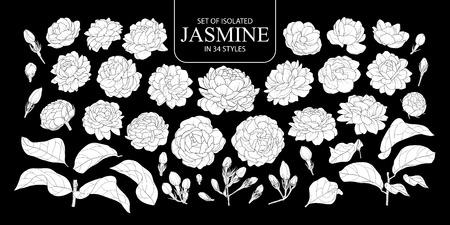 Set isolierter weißer Silhouette Jasmin in 34 Stilen. Niedliche handgezeichnete Blumenvektorillustration im weißen Flugzeug ohne Umriss auf schwarzem Hintergrund. Vektorgrafik