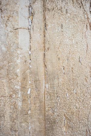 wailing: Wailing (Western) Wall close-up (Jerusalem, Israel)