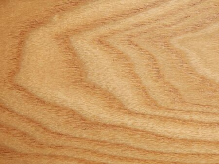 panelled: Woodgrain of an elm panel used in the construction of a panelled wood floor Stock Photo