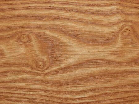 Woodgrain of an elm panel used in the construction of a panelled wood floor Stock Photo - 16933153