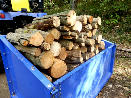 sawn: Tractor bucket full of sawn logs for the fire