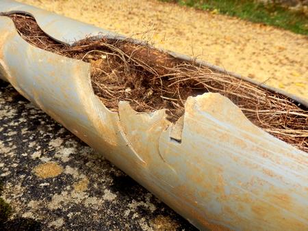 木の根の侵入によって引き起こされる排水管を分割します。
