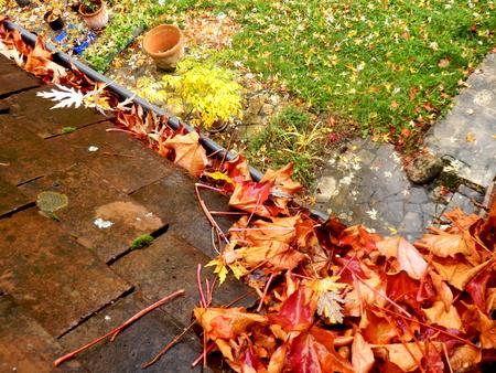 Goot vol met bladeren na bladval in de herfst Stockfoto