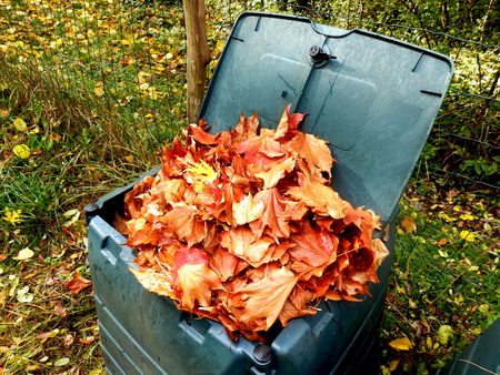 Compost bidone pieno di foglie d'autunno per fornire foglia pacciame Archivio Fotografico