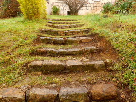 discovered: A flight of old stone steps discovered under grass