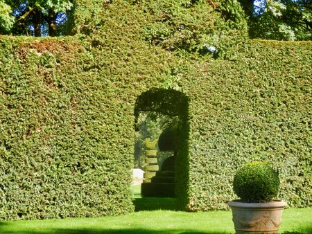 Box topiary sculpture seen through an archway cut out of box hedging found in Eyrignac Manor Garden, Dordogne, France
