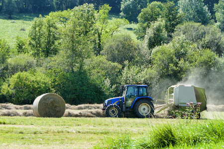 Tractor pulling a baler over lines of dry cut hay to make hay bales for animal fodder