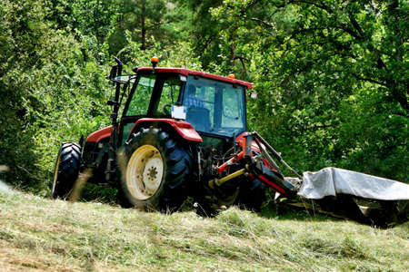 Tractor cutting grass in a field prior to drying and baling
