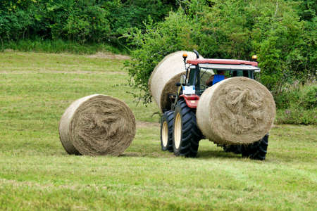 Tractor carrying hay bales on front and rear spikes