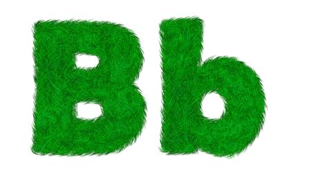 B b Green grass letter isolated on white background photo