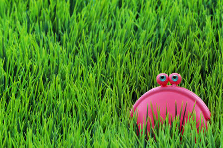 Happy lilac money purse on the green grass  photo