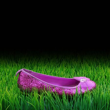 Shiny glitter shoe on the grass Stock Photo - 13886161