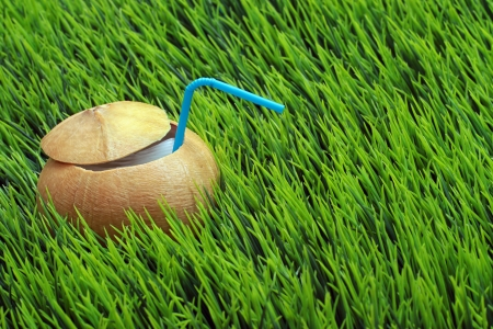 Coconut opened for the drinking water with straw on green grass photo