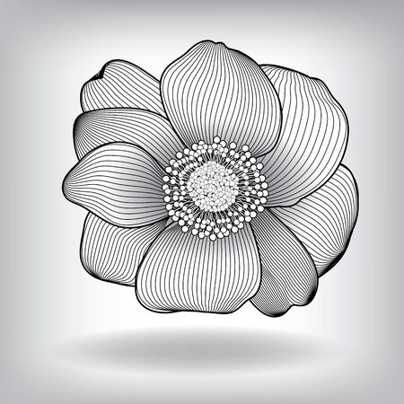 eps10 vector background: Floral Flower Elements for design, EPS10 Vector background