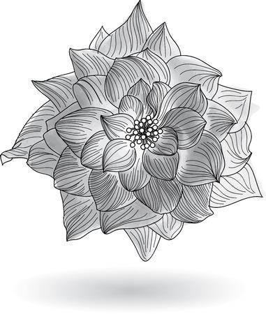 eps10 vector background: Rose Flower Elements for design, EPS10 Vector background Illustration