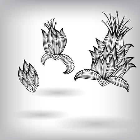 eps10 vector background: Hand Drawn Floral Elements for Design, EPS10 Vector background