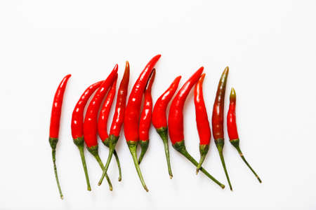 red chilli: Red Chilli on white background