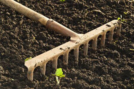 manual: Tillage rake for planting crops.
