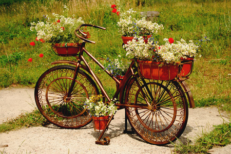 Gardening support for flowers in the form of an old bicycle with forged decorative wheels, baskets and pots on a green lawn. photo