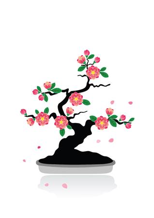 Bonsai plum blossom vector  Stock Illustratie