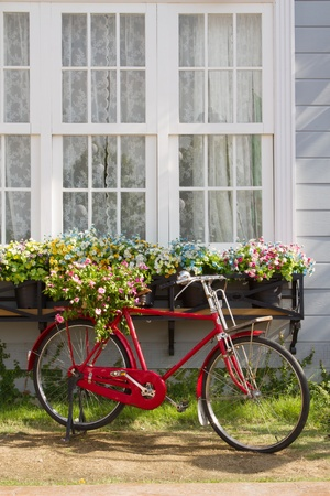 red bicycle in front of retro white window and flower pot photo