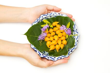woman hand give  a lai- thai dish of thai dessert,thai dessert ,thai sweets on the green leaf ,thai dessert made from yolk egg and sugar  photo