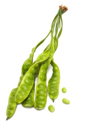 stinking: stinking- beans on white background