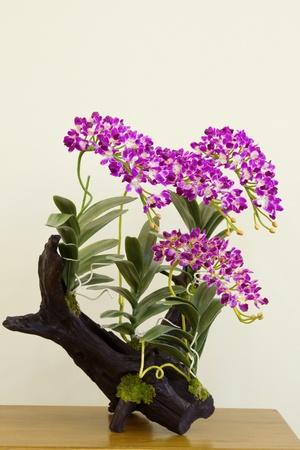 flor de la orquídea de la madera Foto de archivo - 15158965