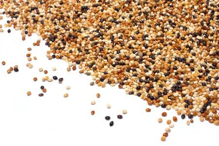 feeder: millet birdseed in heart shape on white background Stock Photo