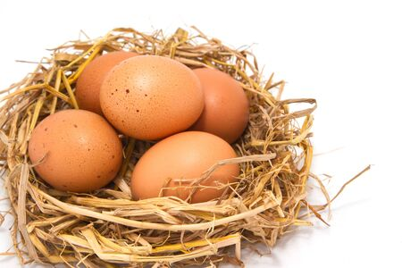 brown eggs at hay nest on white background Stock Photo - 16155224