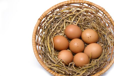 brown eggs at hay nest on white background Stock Photo - 16295845