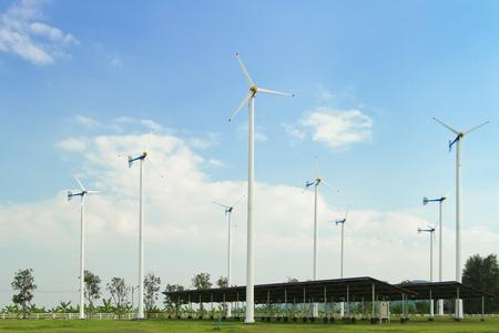 Many wind turbine generating electricity on blue sky Stock Photo - 17964545