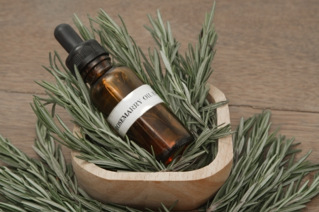antiseptic: Rosemary herb and aromatherapy  essential oil dropper bottle ,for spa treatment Stock Photo