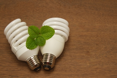 Compact Fluorescent Light Bulb,green concept innovation energy-saving photo