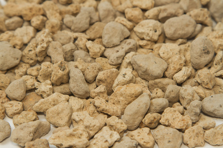 vesicular stone: pumice pebbles ( lightweight volcanic rock ) background