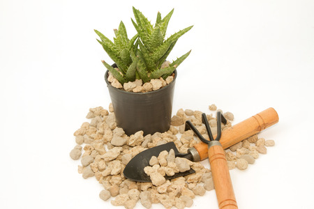 porosity: pumice pebbles  in cray pot and gardening tool